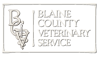 Blaine County Veterinary
